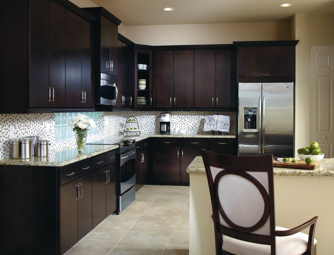 Teagan cabinet doors with dark cabinetry finish highlight bright and beautiful kitchen design